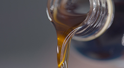 Production of Flavor Emulsions - PL