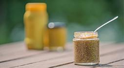 Preparation of Mustards - PL