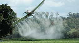 Manufacture of Pesticides - PL
