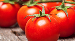 Manufacture of Tomato Sauces and Ketchups - PL