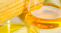 Refining of Vegetable Oils for Biofuels - PL